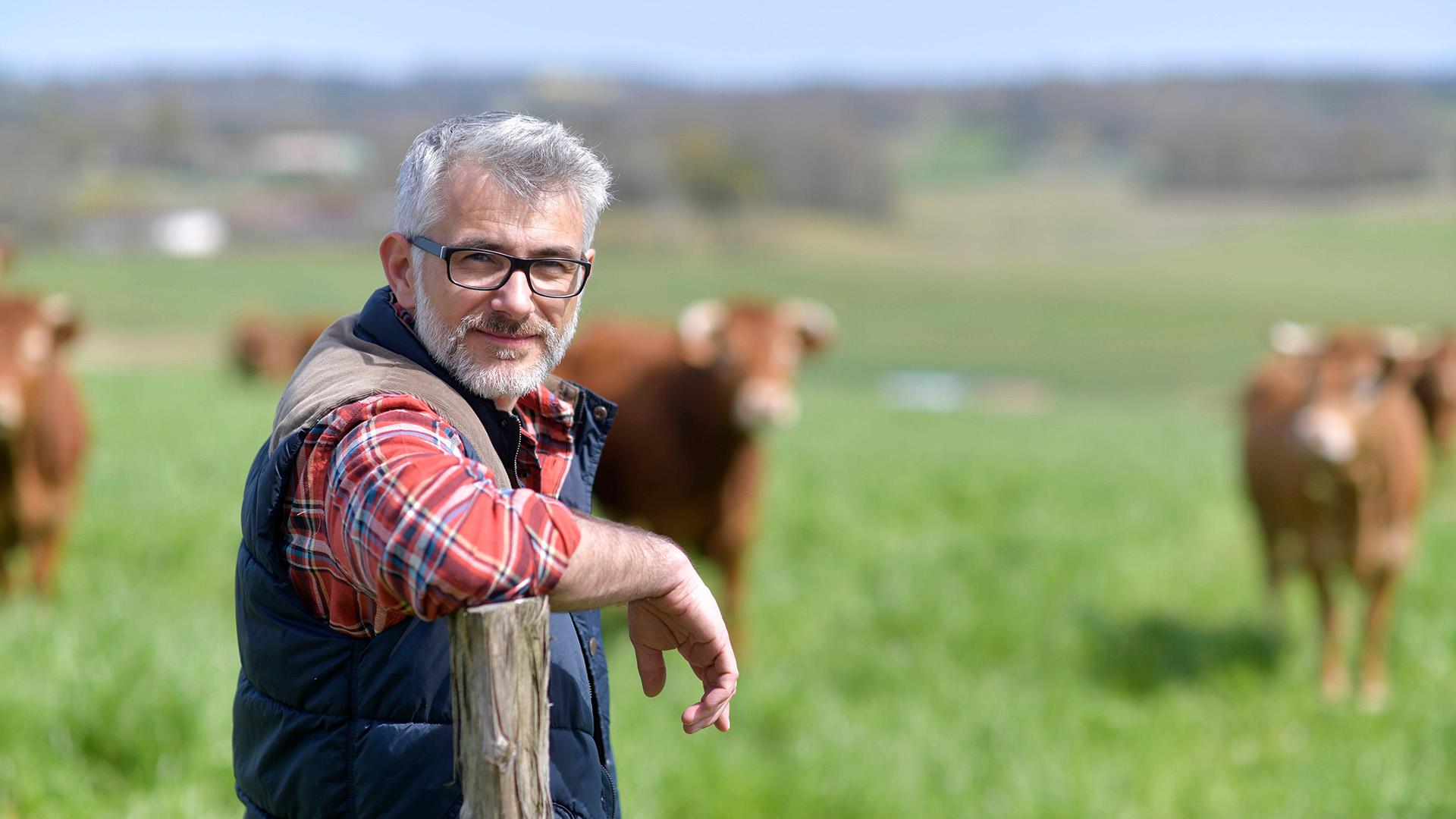 'Nieuw soort stalvloer kan stikstofuitstoot fors verkleinen'